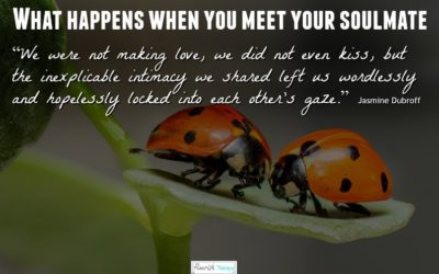 What Happens When You Meet Your Soulmate … and beyond