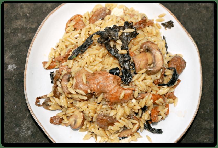 Mushroom Ragout with Orzo